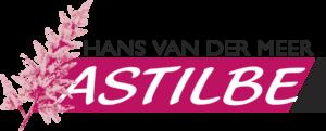 Astilbe Hans van der Meer Potplanten