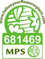 Hans van der Meer | MPS